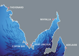 Map of South Australian ports - Adelaide, Whyalla, Port Lincoln, Coffin Bay, Thevenard